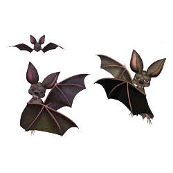 Halloween Sticker Bat messages sticker-4