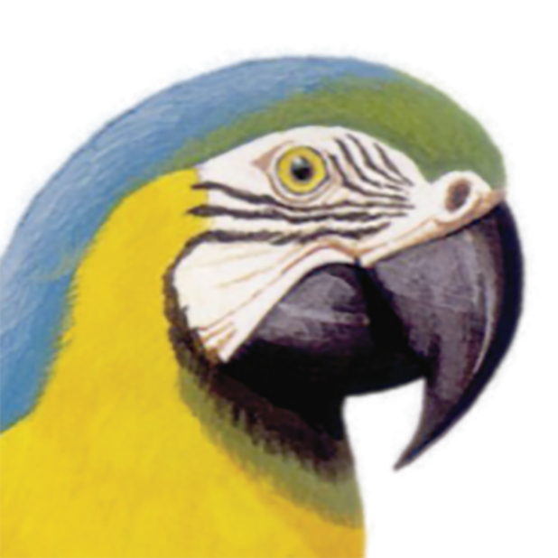 Macaw Stickerpack messages sticker-10