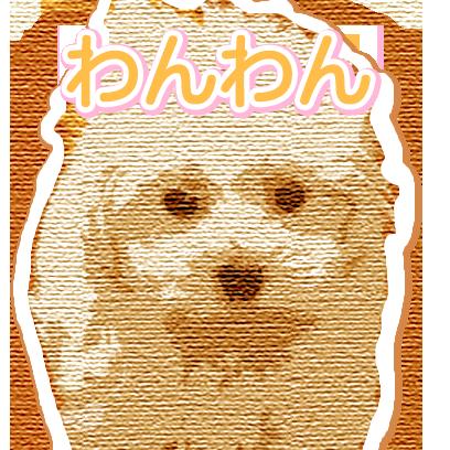 CuteDogsCuteDogs messages sticker-6