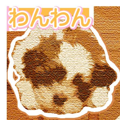CuteDogsCuteDogs messages sticker-11