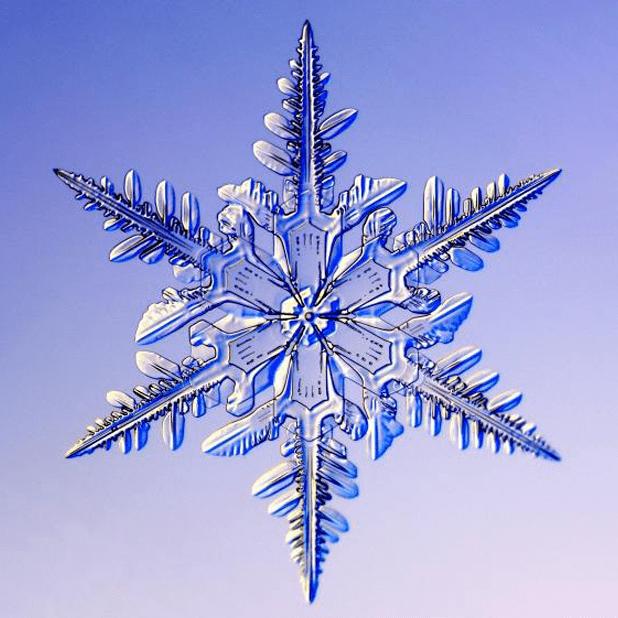 Kenneth Libbrecht Snowflakes messages sticker-10