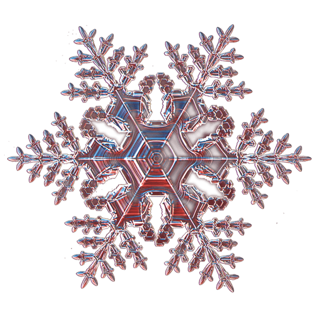 Kenneth Libbrecht Snowflakes messages sticker-7