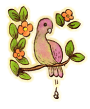 Beautiful Pigeon Bird Sticker messages sticker-10