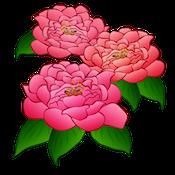 FlowerMoji (Official) messages sticker-4