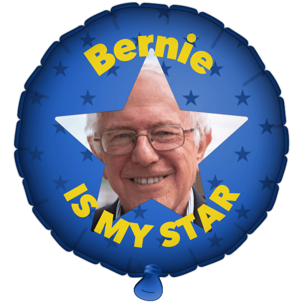 Bernie Balloons messages sticker-6
