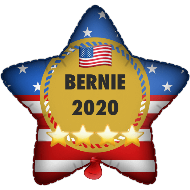Bernie Balloons messages sticker-1