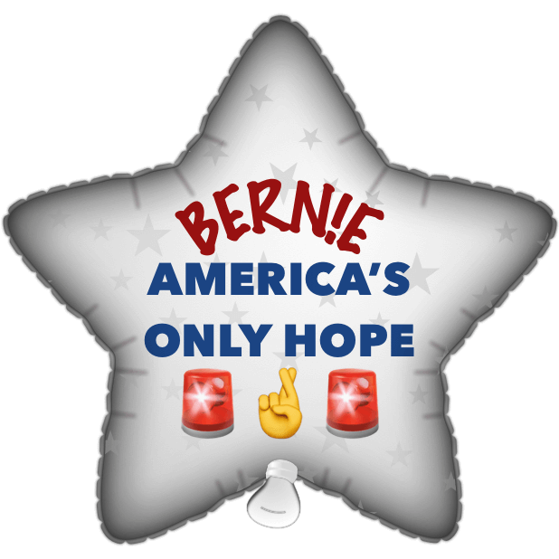 Bernie Balloons messages sticker-3