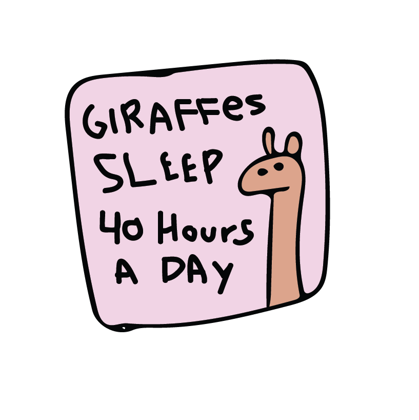 Nap Squad messages sticker-10