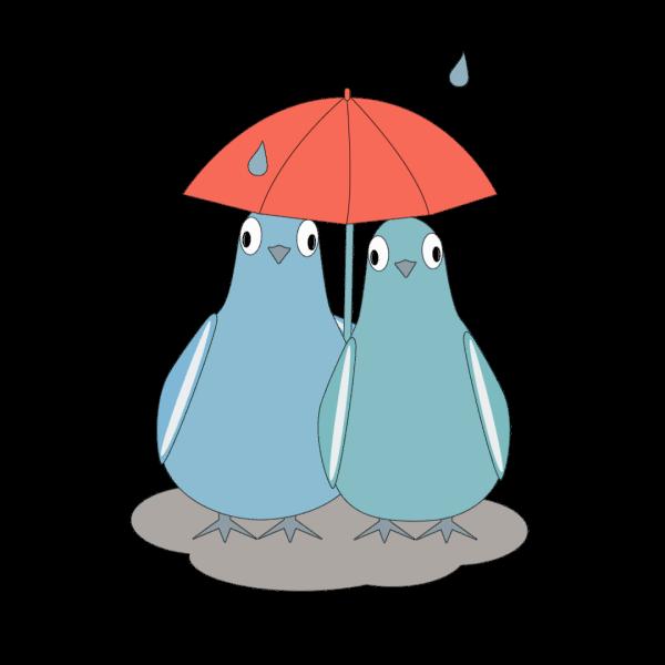 Love Pigeons messages sticker-5