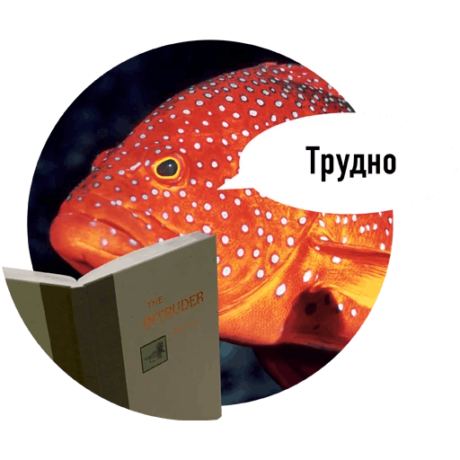Fishes trying to read messages sticker-6