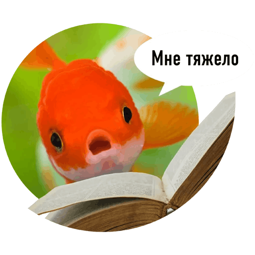 Fishes trying to read messages sticker-7