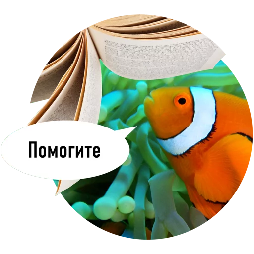 Fishes trying to read messages sticker-2