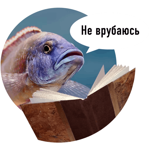 Fishes trying to read messages sticker-11