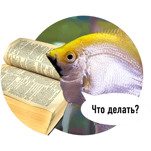 Fishes trying to read messages sticker-9