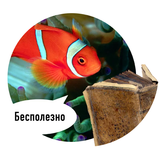 Fishes trying to read messages sticker-10