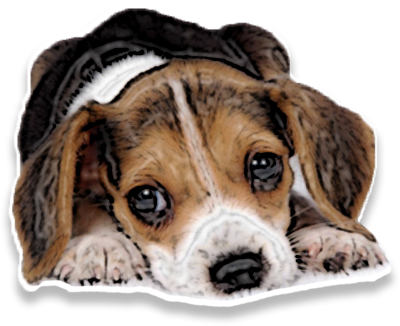 PuppyMe messages sticker-1