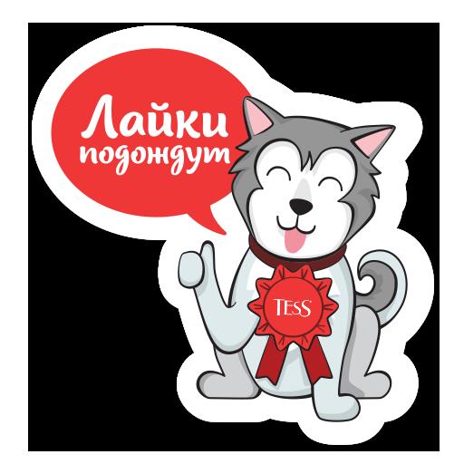 Tess Стикерпак messages sticker-2