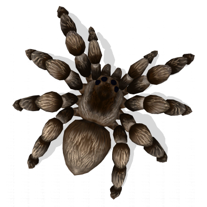 AR Spiders messages sticker-0