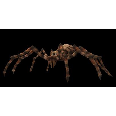 AR Spiders messages sticker-4