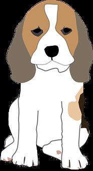 Dog Stickers - 2018 messages sticker-3