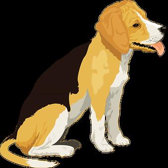 Dog Stickers - 2018 messages sticker-4