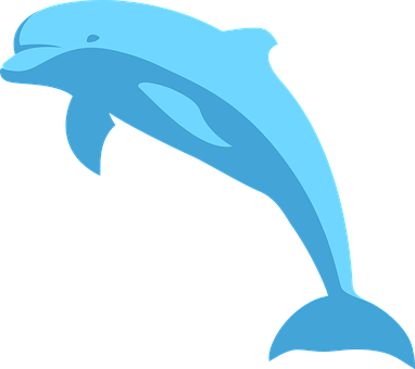 Dolphin Stickers - 2018 messages sticker-1