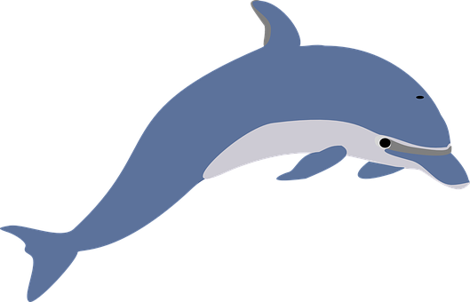 Dolphin Stickers - 2018 messages sticker-8