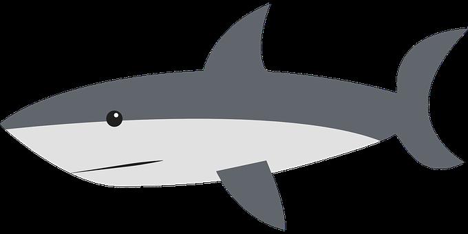 Shark Stickers - 2018 messages sticker-5