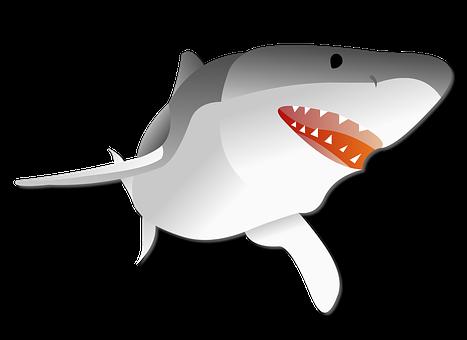 Shark Stickers - 2018 messages sticker-6