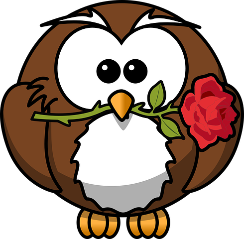 Owl Stickers - 2018 messages sticker-7