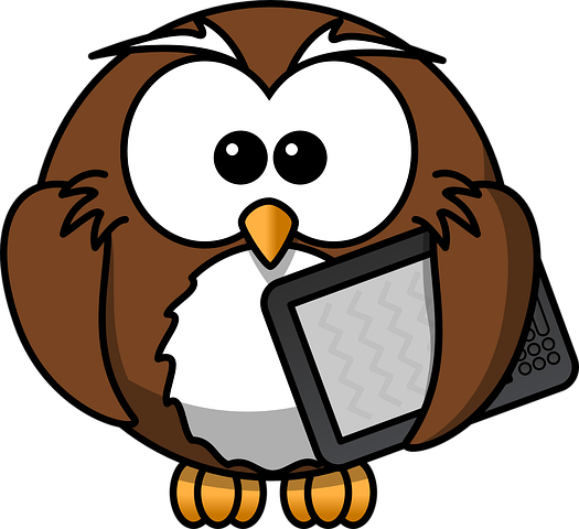 Owl Stickers - 2018 messages sticker-9