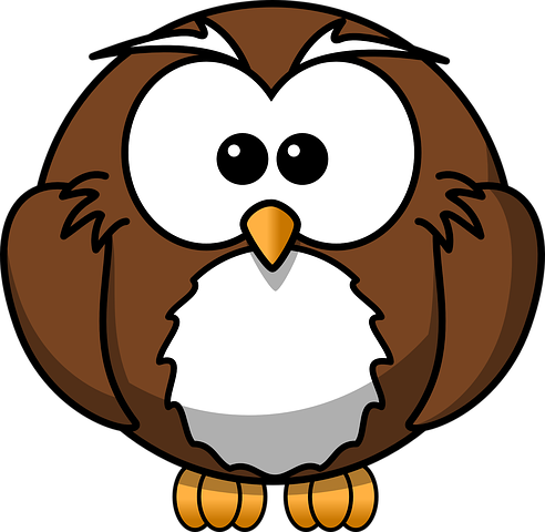 Owl Stickers - 2018 messages sticker-2