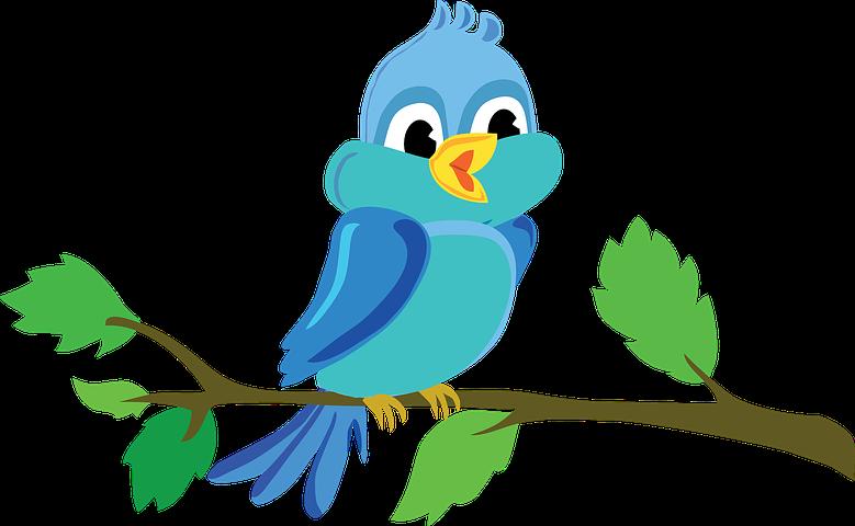 Bird Stickers - 2018 messages sticker-3