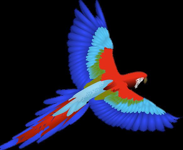 Bird Stickers - 2018 messages sticker-10