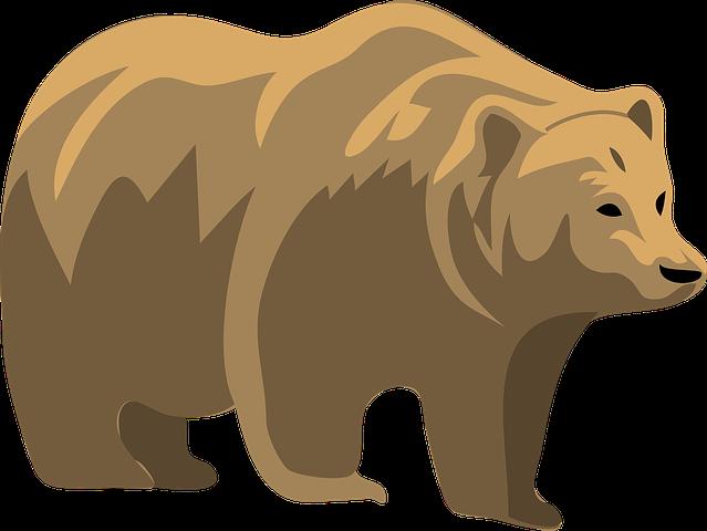 Bear Stickers - 2018 messages sticker-6