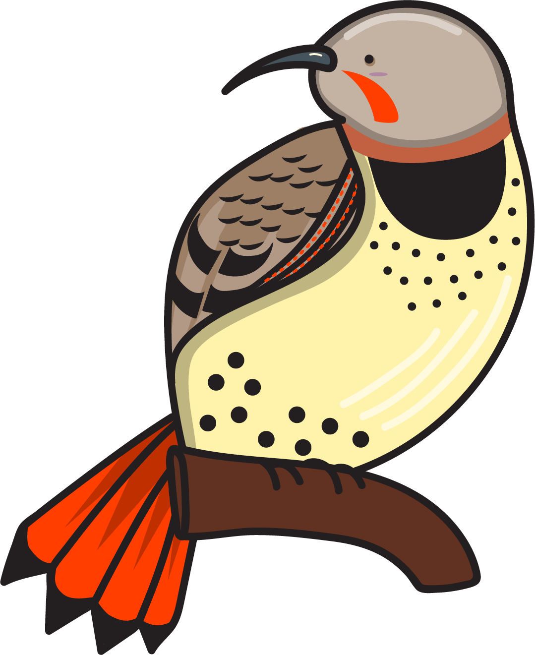 Bird Nerds Stickers messages sticker-2