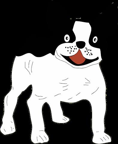 Dog Stickers 2 - 2018 messages sticker-3