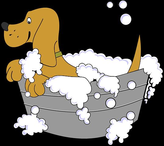 Dog Stickers 2 - 2018 messages sticker-4