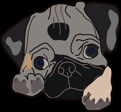 Dog Stickers 2 - 2018 messages sticker-11