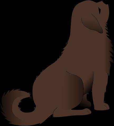 Dog Stickers 2 - 2018 messages sticker-1