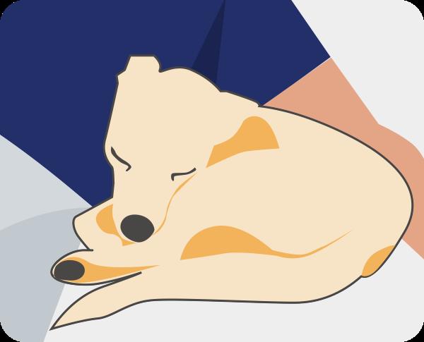 Dog-狗狗 messages sticker-7