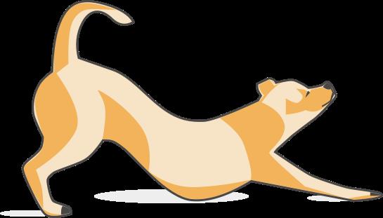Dog-狗狗 messages sticker-4