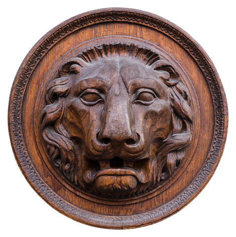 Lion Stickers - 2018 messages sticker-9