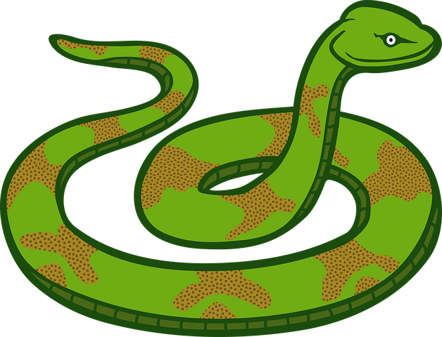 Snake Stickers - 2018 messages sticker-8