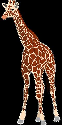 Giraffe Stickers - 2018 messages sticker-2