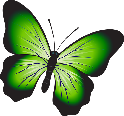 Butterfly Stickers - 2018 messages sticker-2