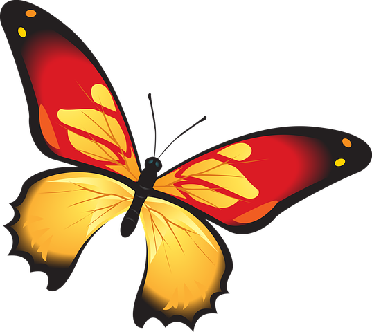 Butterfly Stickers - Sid Y messages sticker-6