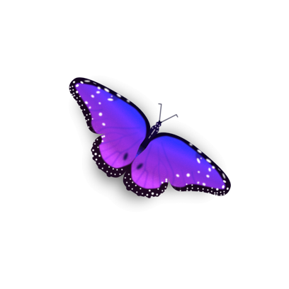 Bright Butterfly Stickers messages sticker-1