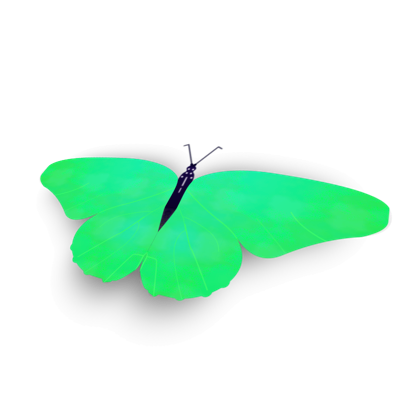 Bright Butterfly Stickers messages sticker-4