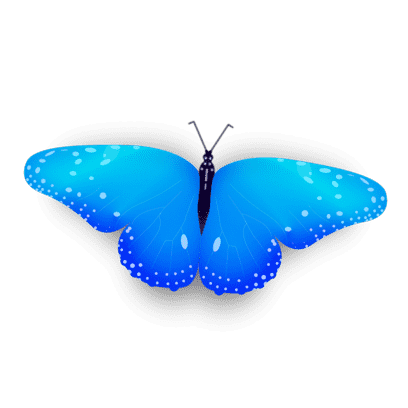Bright Butterfly Stickers messages sticker-10